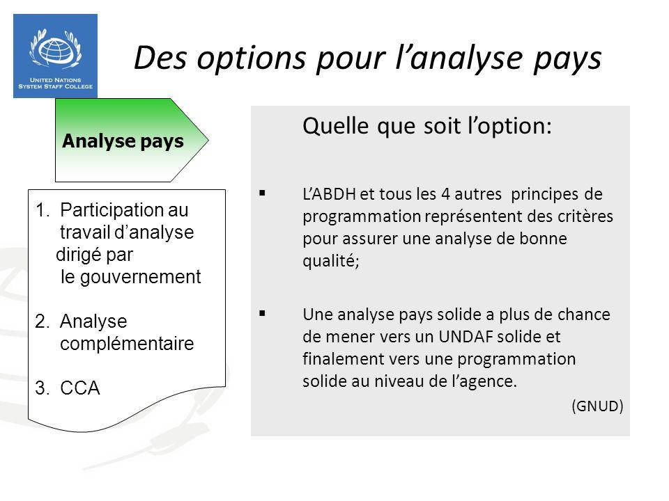 Des options pour lanalyse pays Quelle que soit loption: LABDH et tous les 4 autres principes de programmation représentent des critères pour assurer u