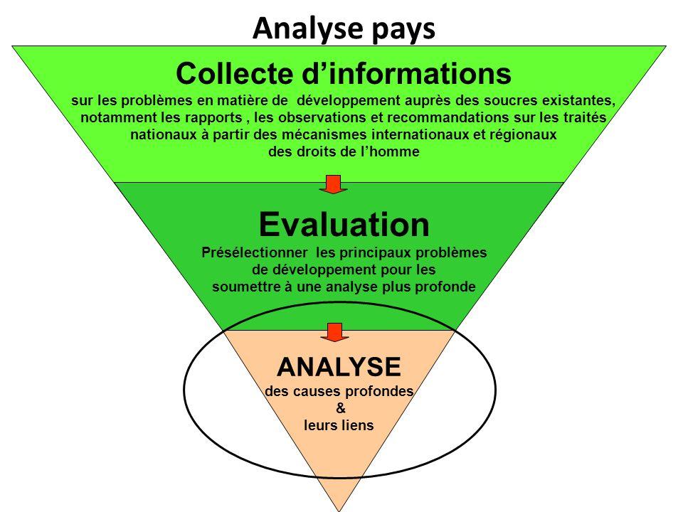 1.Analyse causale Arriver aux causes profondes Cadres légal, institutionnel et politique 2.