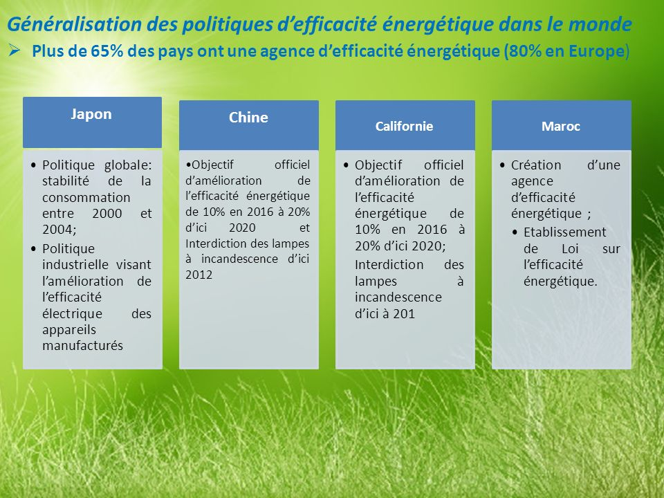 Généralisation des politiques defficacité énergétique dans le monde Plus de 65% des pays ont une agence defficacité énergétique (80% en Europe) Japon