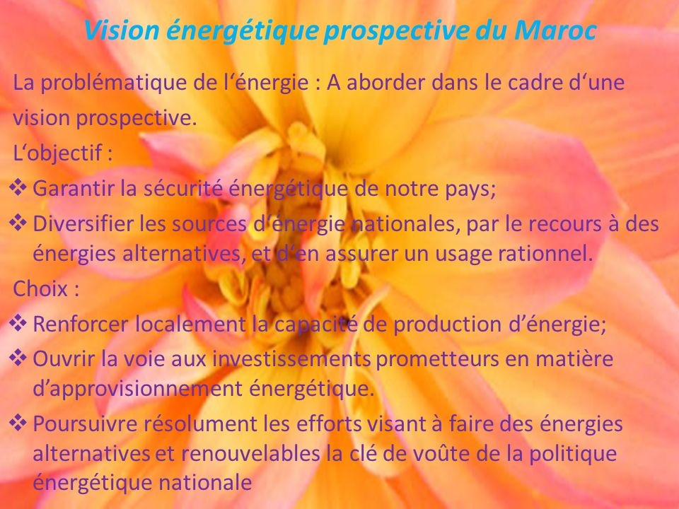 Vision énergétique prospective du Maroc La problématique de lénergie : A aborder dans le cadre dune vision prospective. Lobjectif : Garantir la sécuri