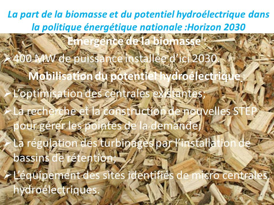 La part de la biomasse et du potentiel hydroélectrique dans la politique énergétique nationale :Horizon 2030 Emergence de la biomasse : 400 MW de puis