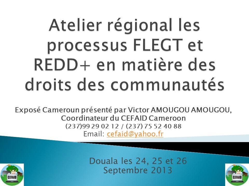 Introduction Présentation du CEFAID Présentation du Cameroun État des lieux des forêts au Cameroun Processus APV/FLEGT Processus REDD+ Cameroun État davancement Acteurs et leurs rôles respectifs Défis futurs Perspectives