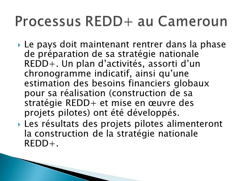 Le pays doit maintenant rentrer dans la phase de préparation de sa stratégie nationale REDD+. Un plan dactivités, assorti dun chronogramme indicatif,