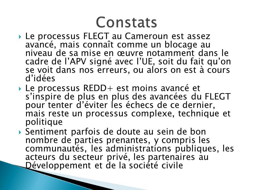 Le processus FLEGT au Cameroun est assez avancé, mais connaît comme un blocage au niveau de sa mise en œuvre notamment dans le cadre de lAPV signé ave