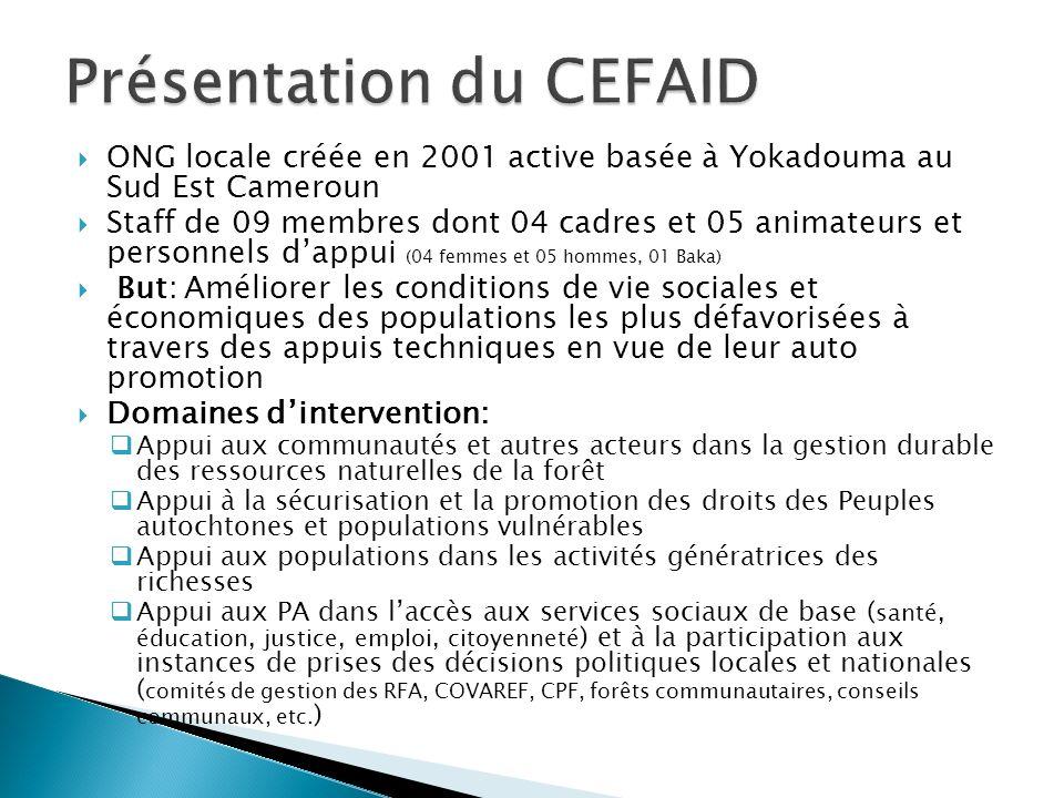 ONG locale créée en 2001 active basée à Yokadouma au Sud Est Cameroun Staff de 09 membres dont 04 cadres et 05 animateurs et personnels dappui (04 fem