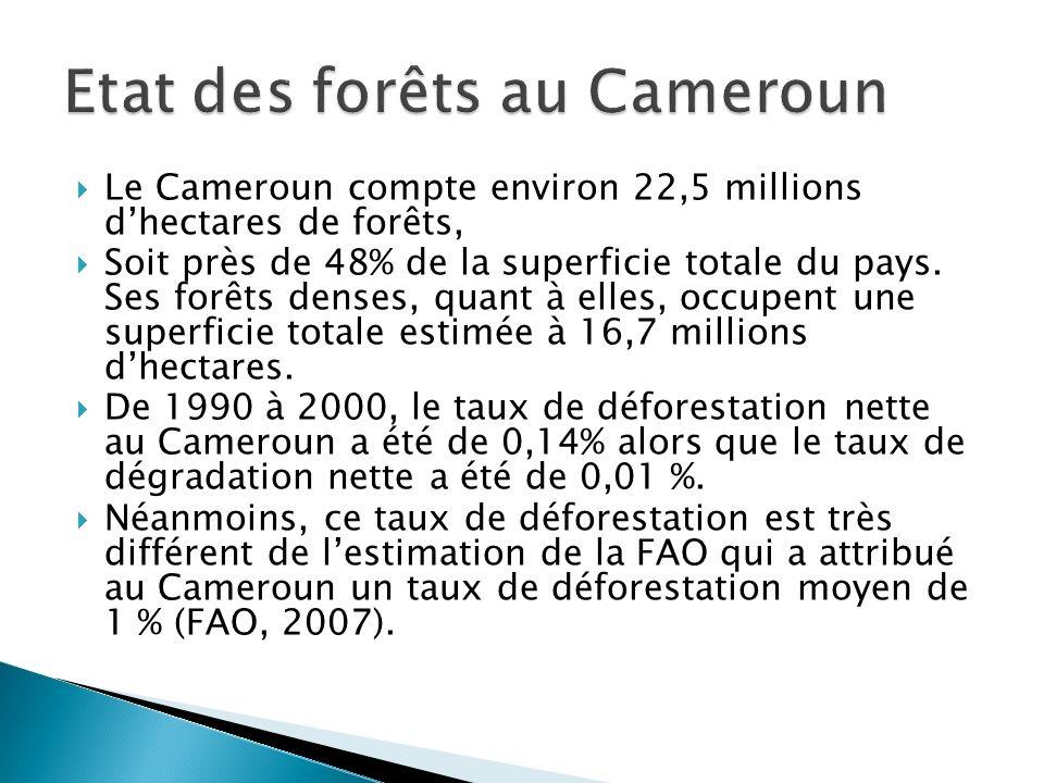 Le Cameroun compte environ 22,5 millions dhectares de forêts, Soit près de 48% de la superficie totale du pays. Ses forêts denses, quant à elles, occu