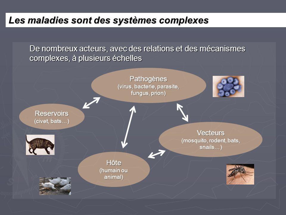 De nombreux acteurs, avec des relations et des mécanismes complexes, à plusieurs échelles Pathogènes (virus, bacterie, parasite, fungus, prion) Hôte (humain ou animal) Vecteurs (mosquito, rodent, bats, snails…) Reservoirs (civet, bats…) Les maladies sont des systèmes complexes