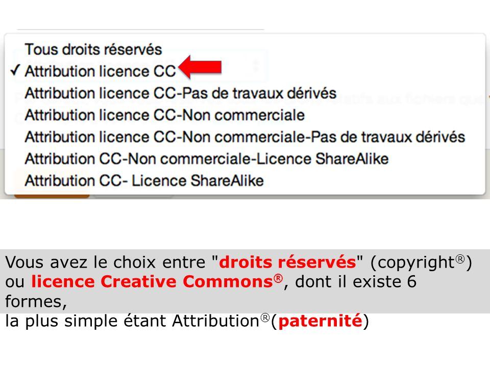 Vous avez le choix entre droits réservés (copyright ® ) ou licence Creative Commons ®, dont il existe 6 formes, la plus simple étant Attribution ® (paternité)