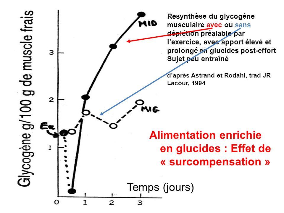 Resynthèse du glycogène musculaire avec ou sans déplétion préalable par lexercice, avec apport élevé et prolongé en glucides post-effort Sujet peu ent