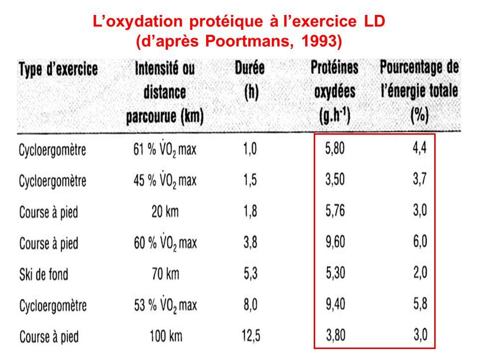 Loxydation protéique à lexercice LD (daprès Poortmans, 1993)