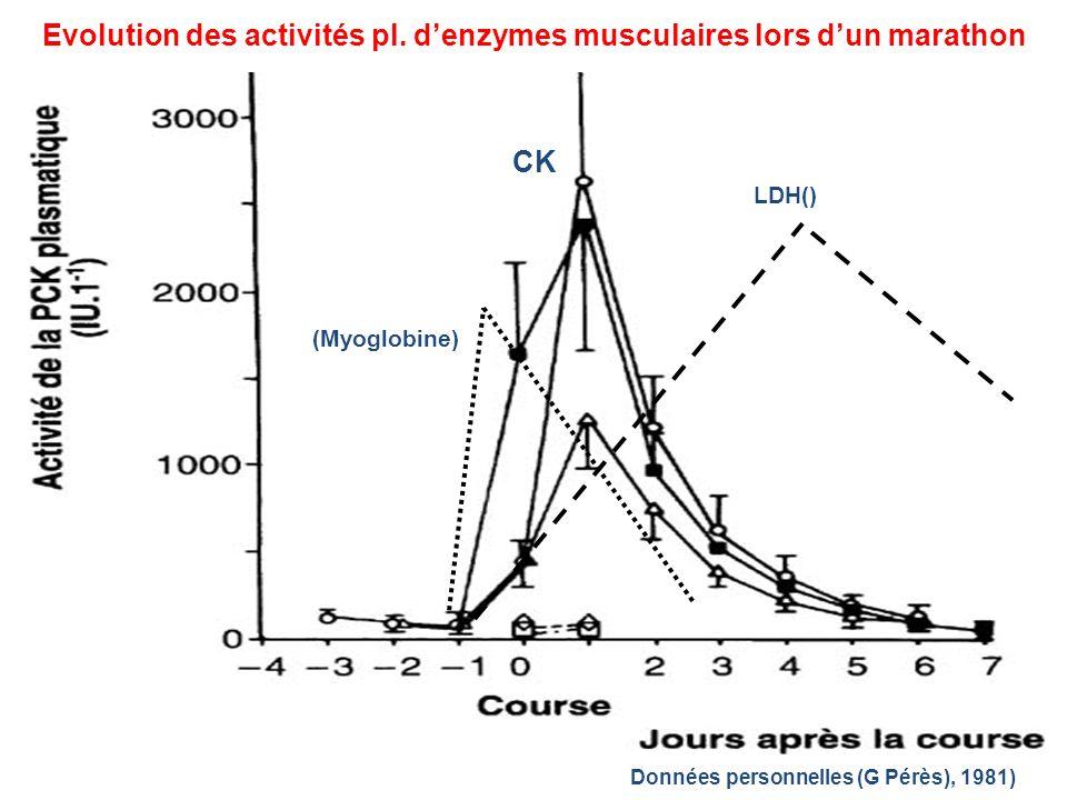 Evolution des activités pl. denzymes musculaires lors dun marathon Données personnelles (G Pérès), 1981) (Myoglobine) CK LDH()
