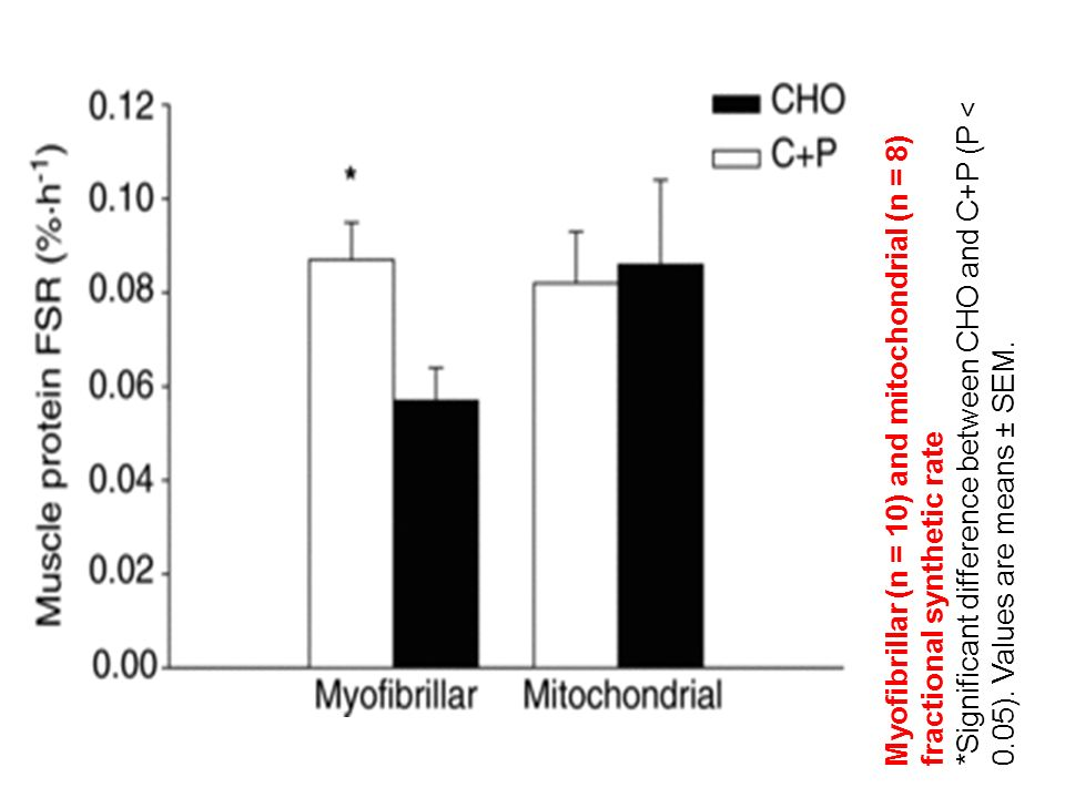 Myofibrillar (n = 10) and mitochondrial (n = 8) fractional synthetic rate *Significant difference between CHO and C+P (P < 0.05). Values are means ± S