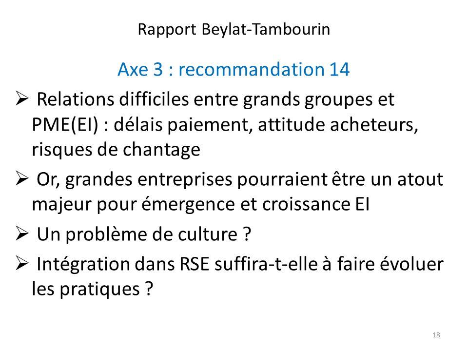 Rapport Beylat-Tambourin Axe 3 : recommandation 14 Relations difficiles entre grands groupes et PME(EI) : délais paiement, attitude acheteurs, risques de chantage Or, grandes entreprises pourraient être un atout majeur pour émergence et croissance EI Un problème de culture .