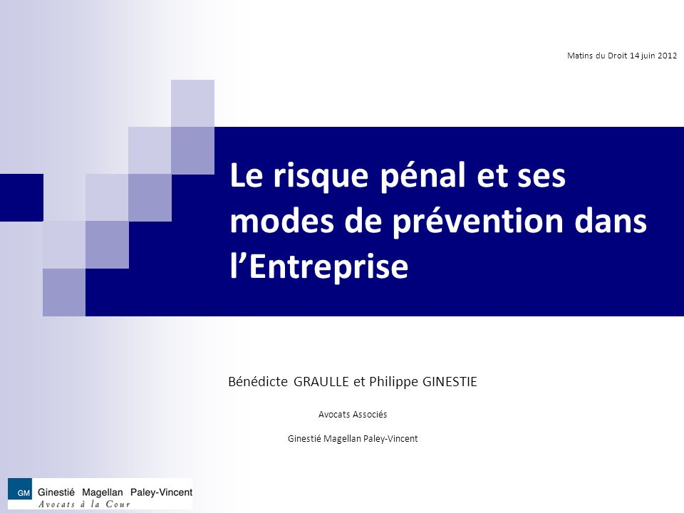 II.LES MODES DE PREVENTION DU RISQUE PENAL 1.
