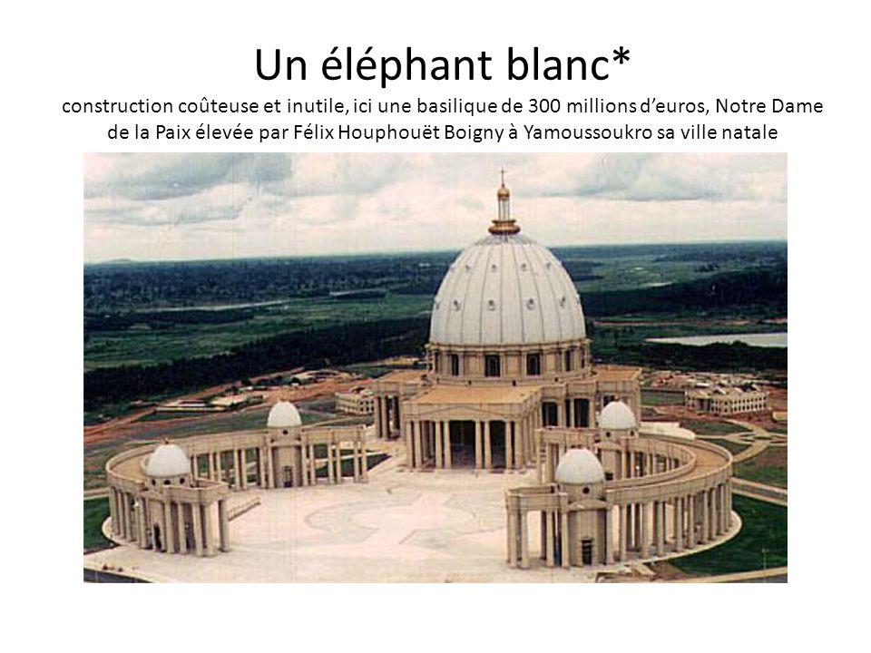 Un éléphant blanc* construction coûteuse et inutile, ici une basilique de 300 millions deuros, Notre Dame de la Paix élevée par Félix Houphouët Boigny