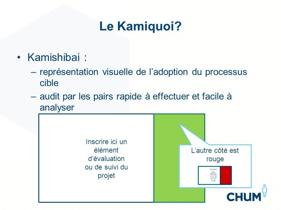 Le Kamiquoi? Kamishibai : –représentation visuelle de ladoption du processus cible –audit par les pairs rapide à effectuer et facile à analyser Inscri