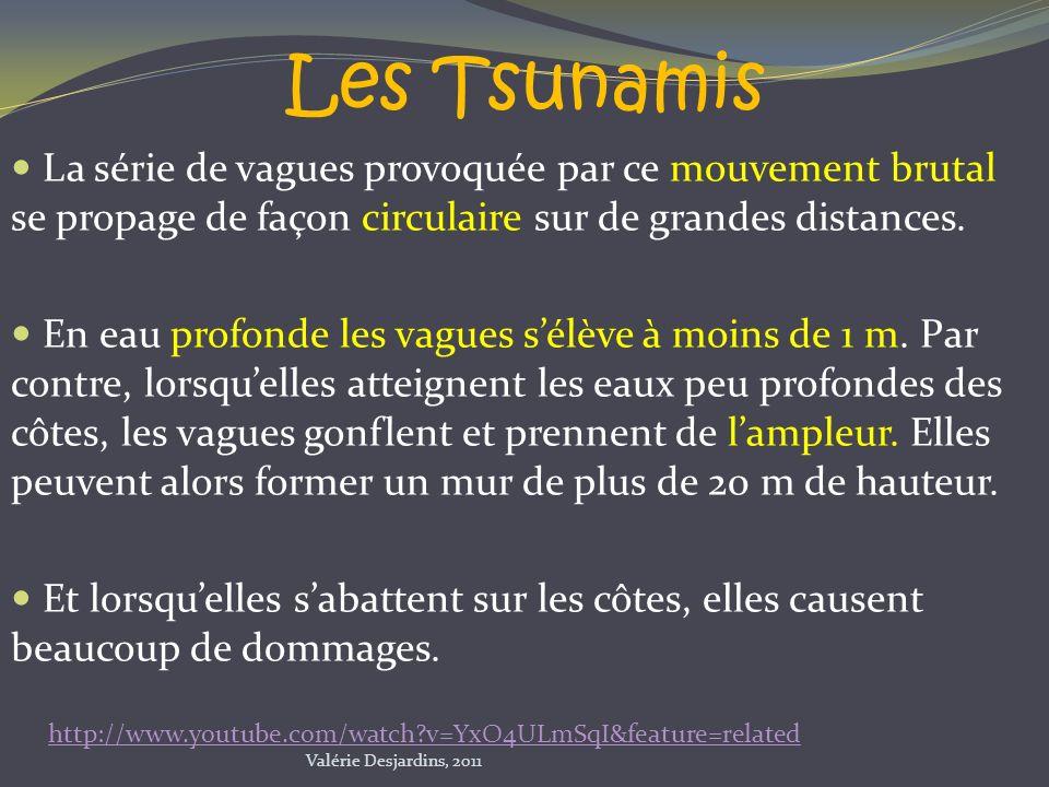 Les Tsunamis La série de vagues provoquée par ce mouvement brutal se propage de façon circulaire sur de grandes distances. En eau profonde les vagues