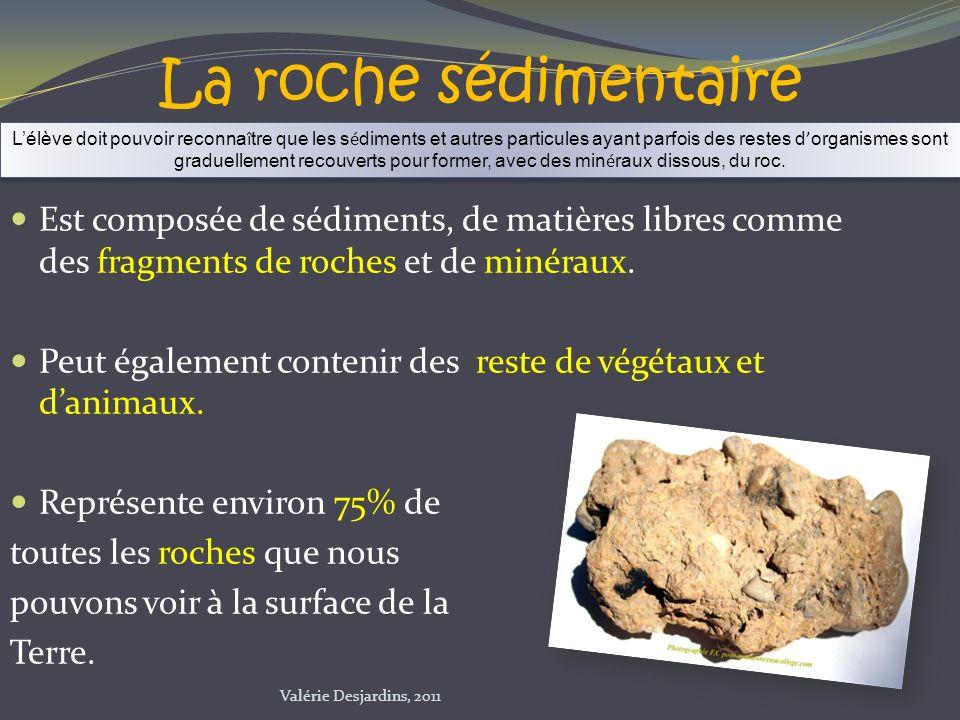 Est composée de sédiments, de matières libres comme des fragments de roches et de minéraux. Peut également contenir des reste de végétaux et danimaux.