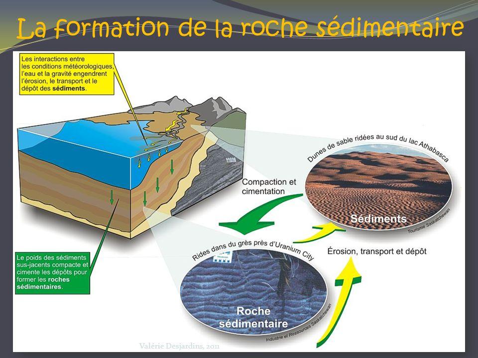 La formation de la roche sédimentaire Valérie Desjardins, 2011