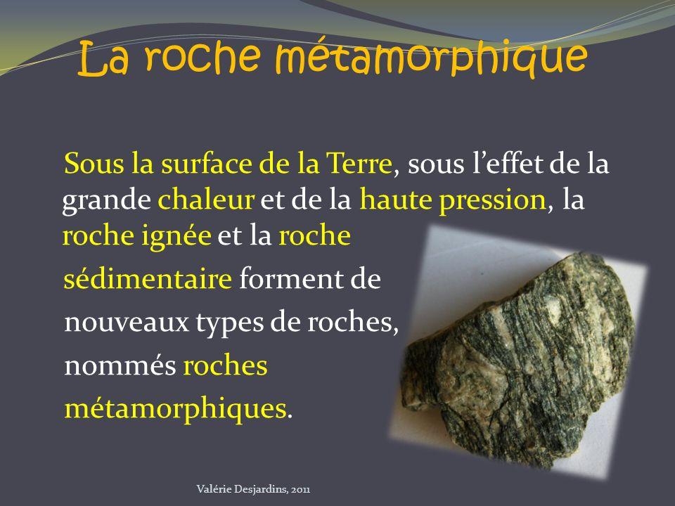 Sous la surface de la Terre, sous leffet de la grande chaleur et de la haute pression, la roche ignée et la roche sédimentaire forment de nouveaux typ