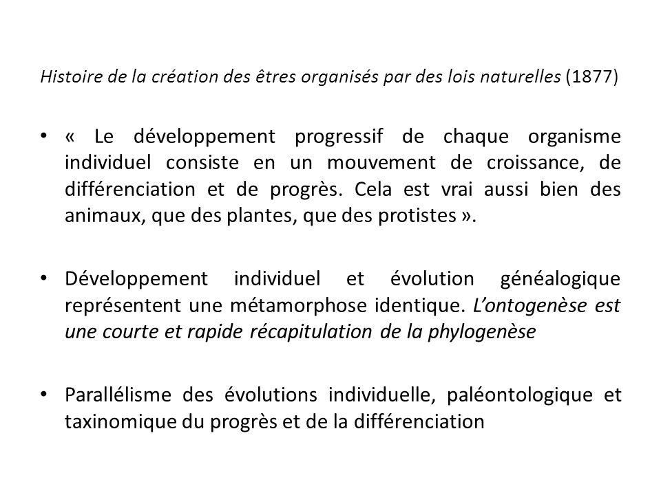 Histoire de la création des êtres organisés par des lois naturelles (1877) « Le développement progressif de chaque organisme individuel consiste en un mouvement de croissance, de différenciation et de progrès.