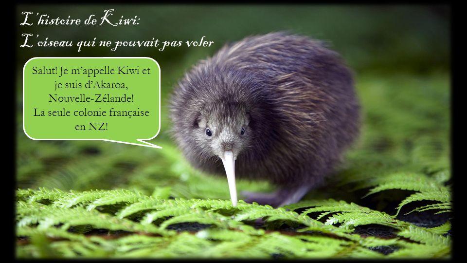 Lhistoire de Kiwi: Loiseau qui ne pouvait pas voler Salut! Je mappelle Kiwi et je suis dAkaroa, Nouvelle-Zélande! La seule colonie française en NZ!