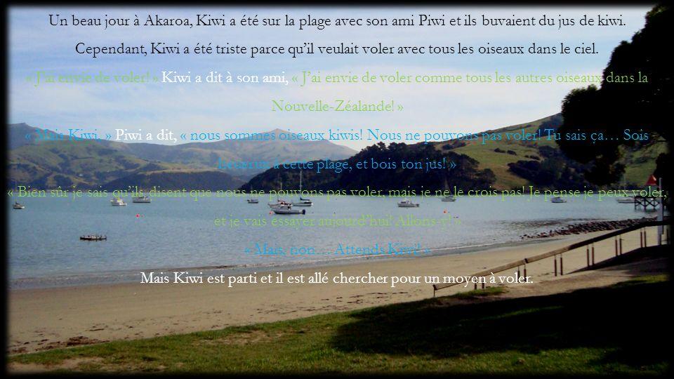 Un beau jour à Akaroa, Kiwi a été sur la plage avec son ami Piwi et ils buvaient du jus de kiwi. Cependant, Kiwi a été triste parce quil veulait voler