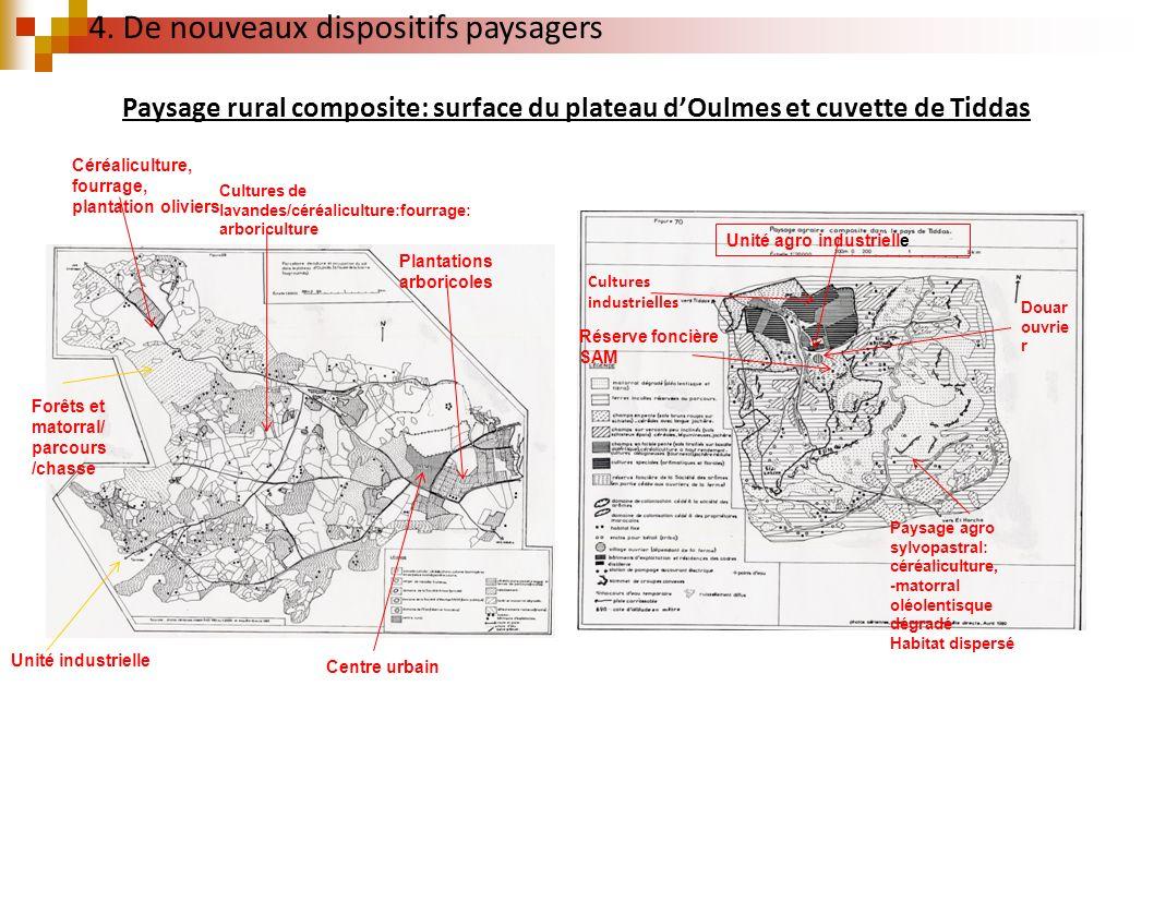 Paysage rural composite: surface du plateau dOulmes et cuvette de Tiddas Cultures industrielles Réserve foncière SAM Paysage agro sylvopastral: céréal