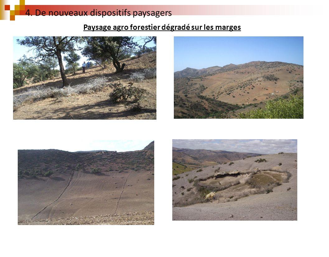 Paysage agro forestier dégradé sur les marges 4. De nouveaux dispositifs paysagers