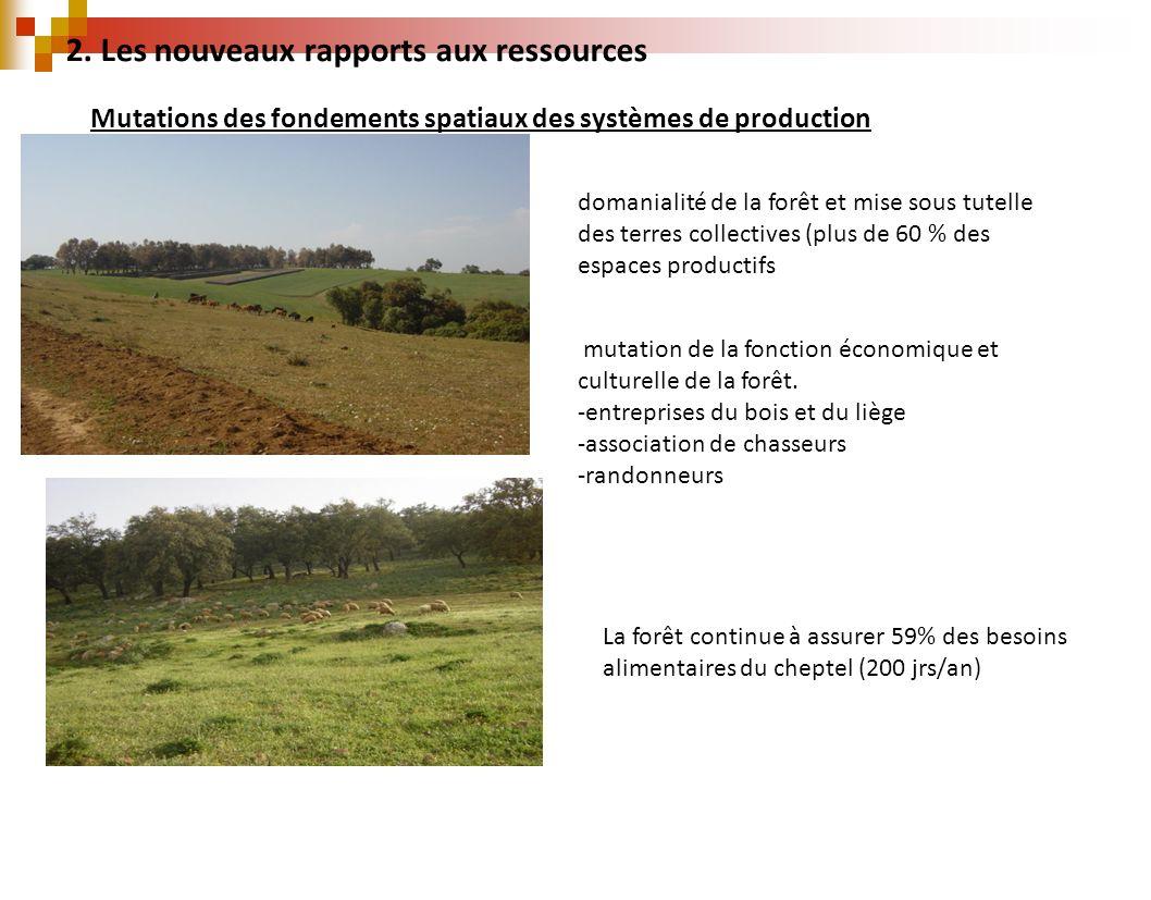 Mutations des fondements spatiaux des systèmes de production domanialité de la forêt et mise sous tutelle des terres collectives (plus de 60 % des esp