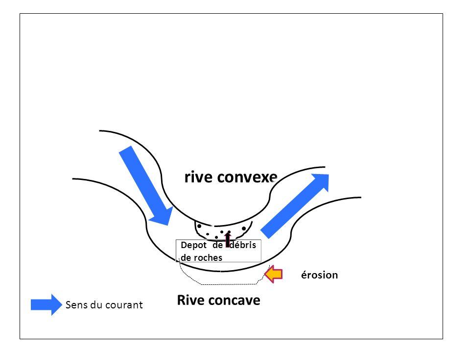 rive convexe Depot de débris de roches érosion Rive concave Sens du courant