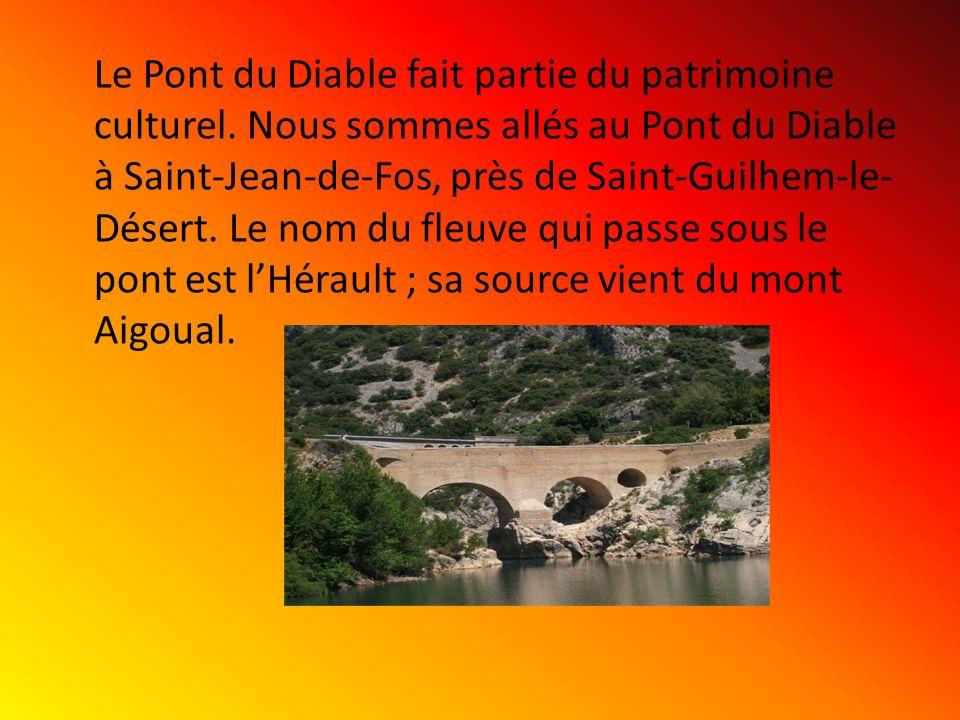 Le Pont du Diable fait partie du patrimoine culturel. Nous sommes allés au Pont du Diable à Saint-Jean-de-Fos, près de Saint-Guilhem-le- Désert. Le no