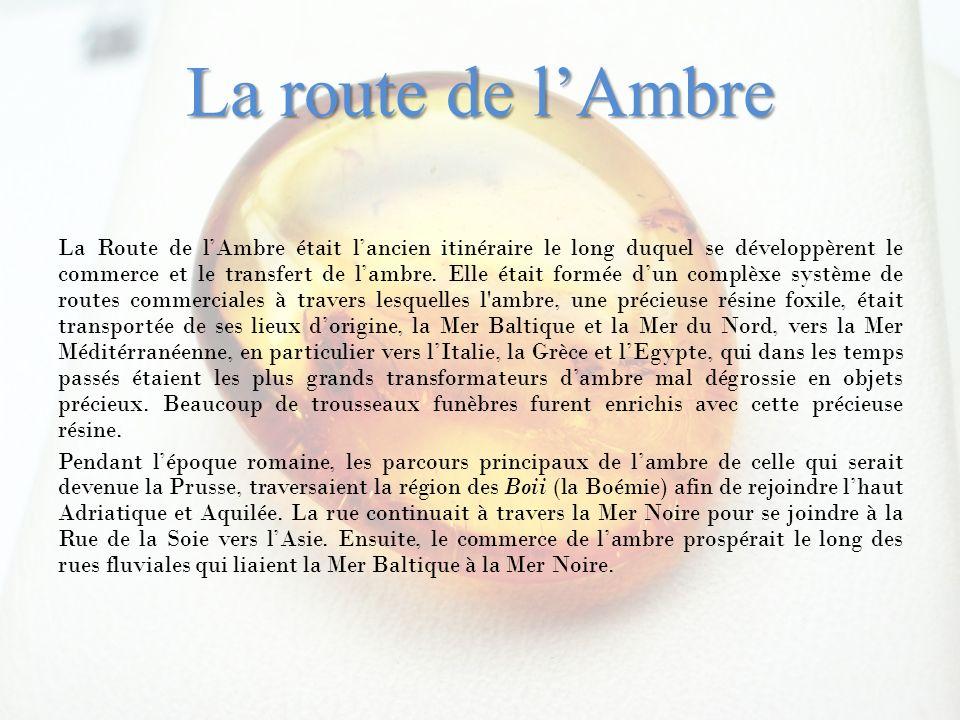 La route de lAmbre La Route de lAmbre était lancien itinéraire le long duquel se développèrent le commerce et le transfert de lambre. Elle était formé