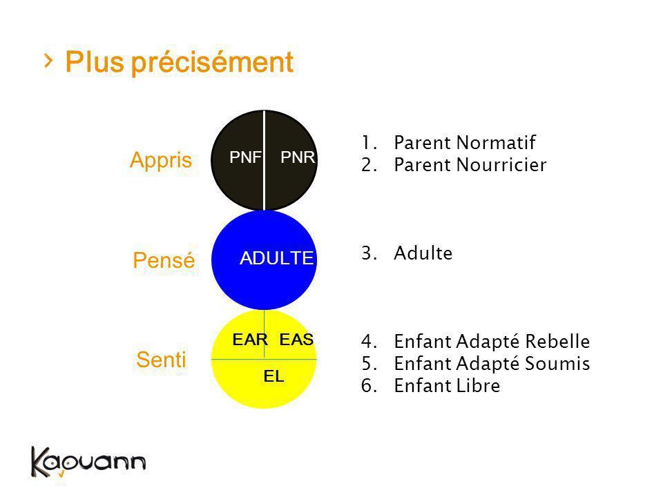 Plus précisément ADULTE PNFPNR EAS EL Appris Pensé Senti 1.Parent Normatif 2.Parent Nourricier 3.Adulte 4.Enfant Adapté Rebelle 5.Enfant Adapté Soumis