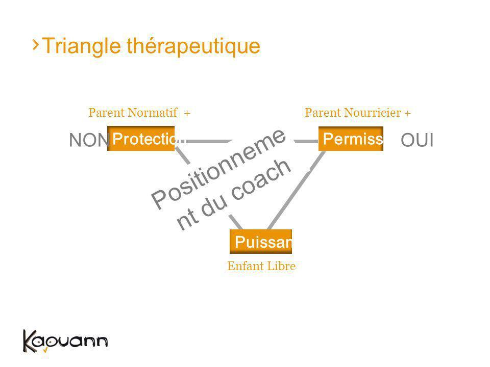 Triangle thérapeutique Parent Normatif +Parent Nourricier + Enfant Libre ProtectionPermission Puissance Positionneme nt du coach NONOUI