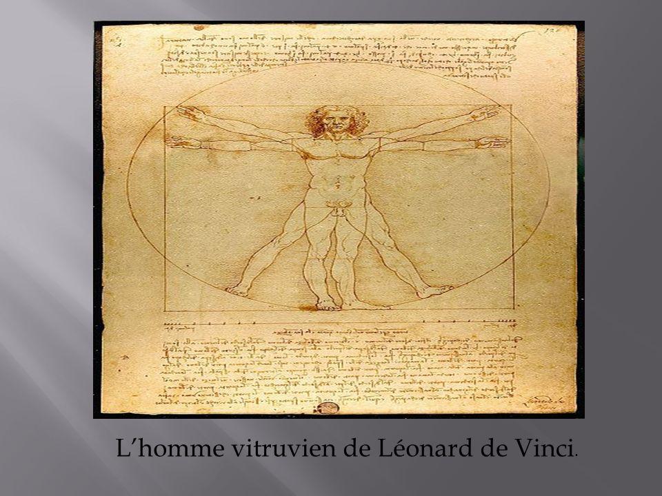 Lhomme vitruvien de Léonard de Vinci.