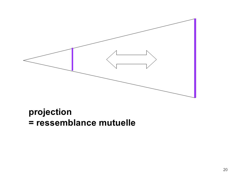 projection = ressemblance mutuelle 20