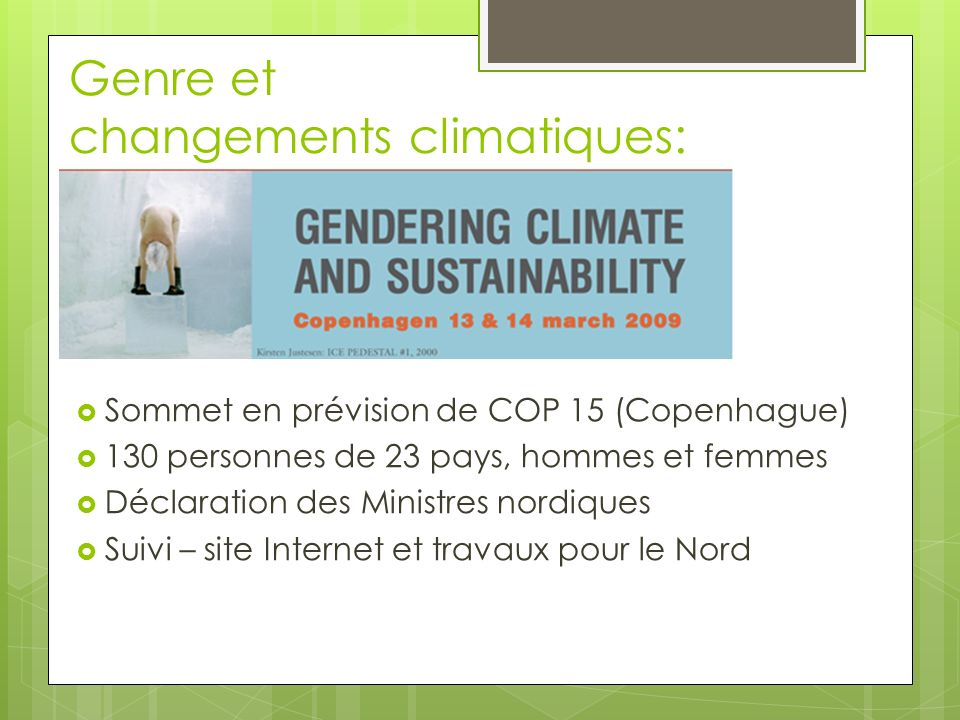 Genre et changements climatiques: Sommet en prévision de COP 15 (Copenhague) 130 personnes de 23 pays, hommes et femmes Déclaration des Ministres nordiques Suivi – site Internet et travaux pour le Nord