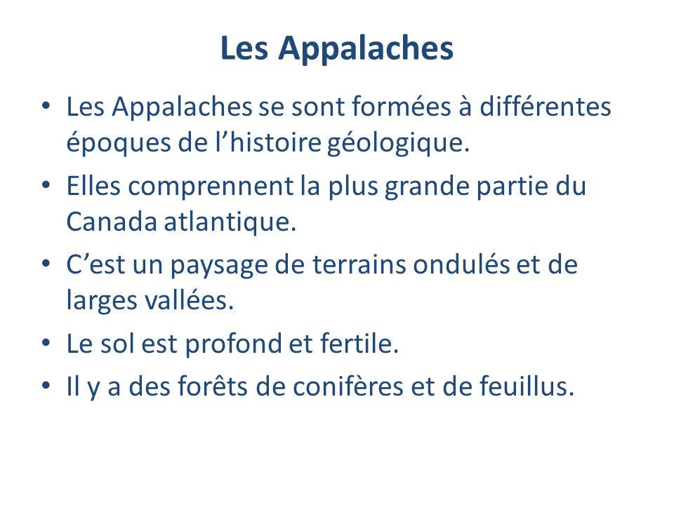 Les Appalaches Les Appalaches se sont formées à différentes époques de lhistoire géologique. Elles comprennent la plus grande partie du Canada atlanti