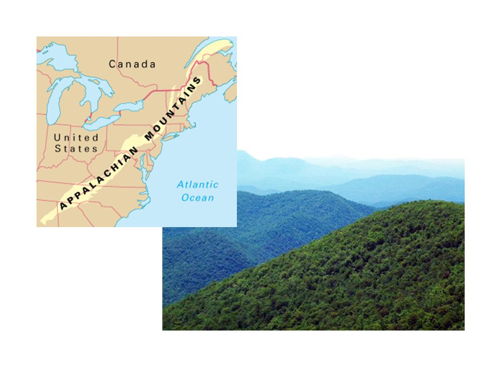 La Cordillère nord-américaine Cette région se trouve sur la côte ouest du Canada.