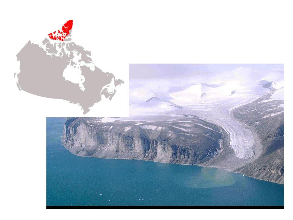 Les Basses-terres de lArctique Les Basses-terres de lArctique sont situées au sud des montagnes Inuitiennes, pour la plupart au Nunavut.