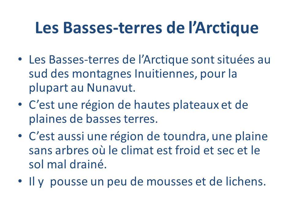 Les Basses-terres de lArctique Les Basses-terres de lArctique sont situées au sud des montagnes Inuitiennes, pour la plupart au Nunavut. Cest une régi