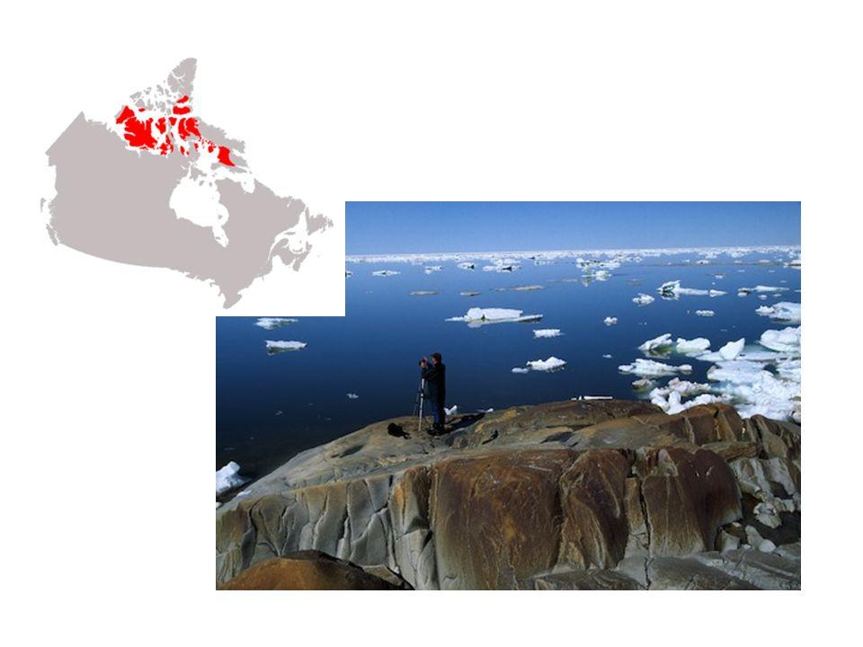 Les Plaines intérieures Les Plaines intérieures sont situées entre le Bouclier canadien et la Cordillère nord- américaine.