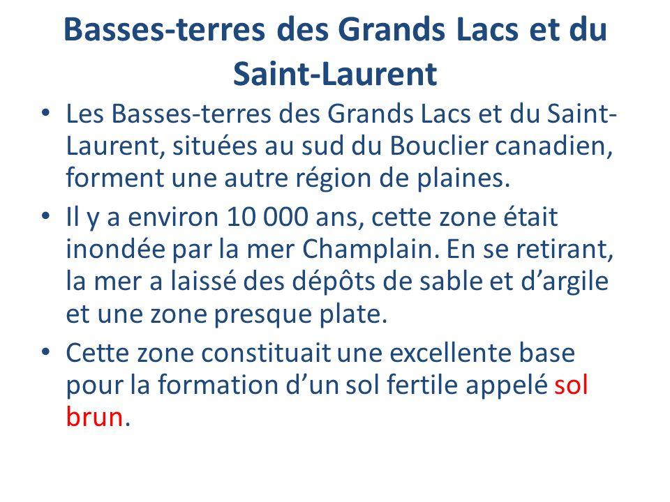 Basses-terres des Grands Lacs et du Saint-Laurent Les Basses-terres des Grands Lacs et du Saint- Laurent, situées au sud du Bouclier canadien, forment