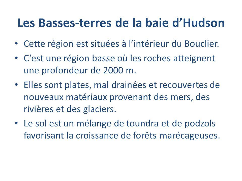 Les Basses-terres de la baie dHudson Cette région est situées à lintérieur du Bouclier. Cest une région basse où les roches atteignent une profondeur