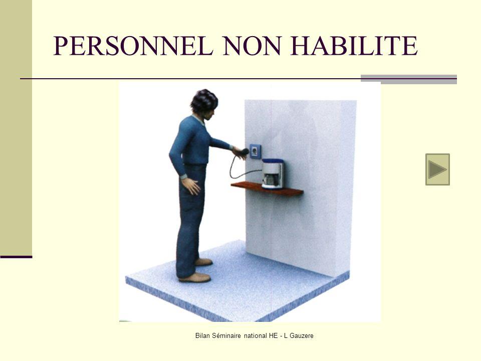 PERSONNEL NON HABILITE Bilan Séminaire national HE - L Gauzere