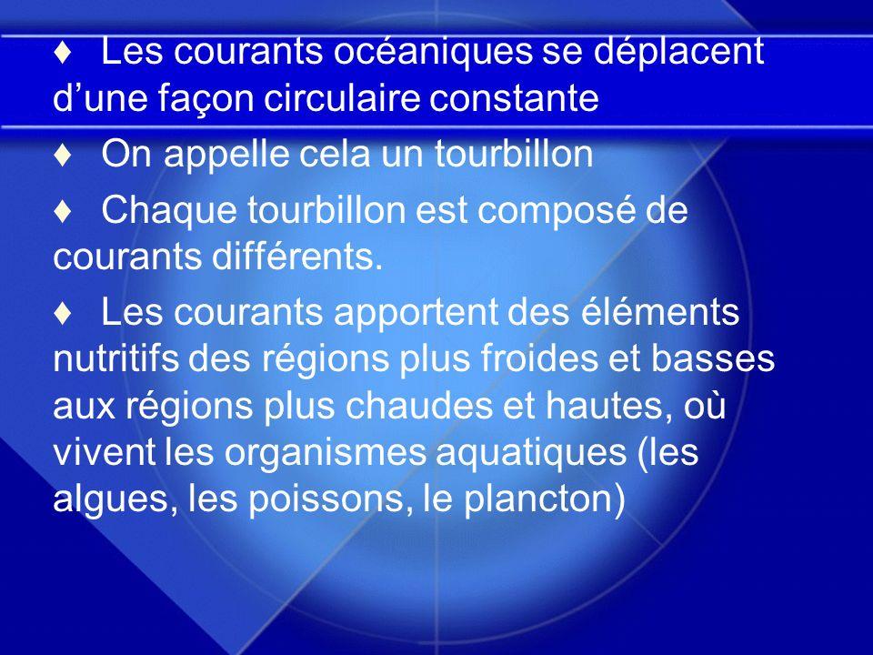 Les courants océaniques se déplacent dune façon circulaire constante On appelle cela un tourbillon Chaque tourbillon est composé de courants différent