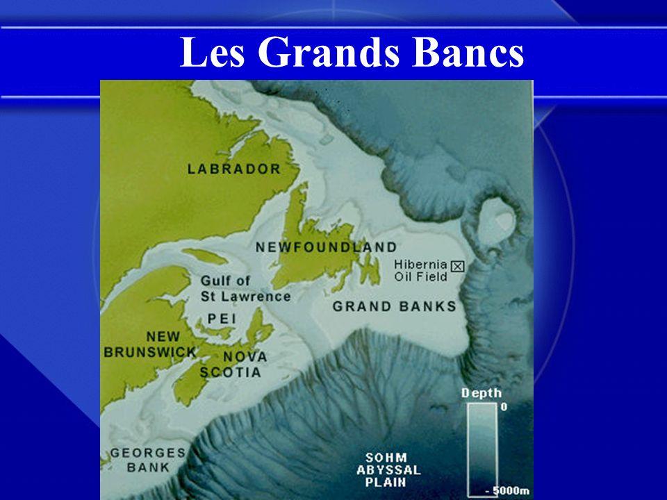 Les Grands Bancs