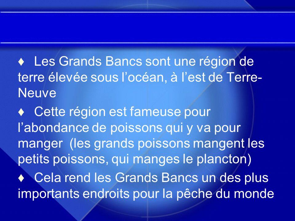 Les Grands Bancs sont une région de terre élevée sous locéan, à lest de Terre- Neuve Cette région est fameuse pour labondance de poissons qui y va pou