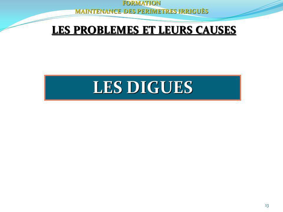 13FORMATION MAINTENANCE DES PERIMETRES IRRIGUÈS LES PROBLEMES ET LEURS CAUSES LES DIGUES